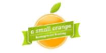 a-small-orange