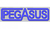 pegasus-auto-racing-supplies